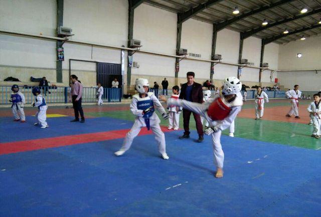 تکواندوکاران گیلانی در مسابقات قهرمانی کشور مقام کسب کردند