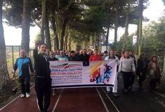داورزنی و احمدی در همایش پیادهروی