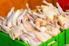 قیمت مرغ در بازار + جزییات