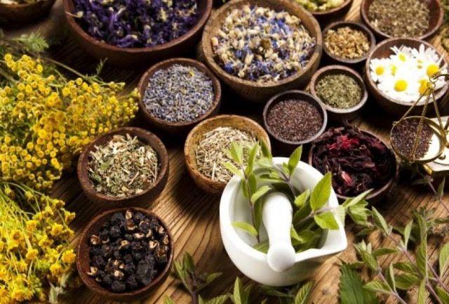 برداشت گیاهان دارویی از مراتع کرمان ممنوع است
