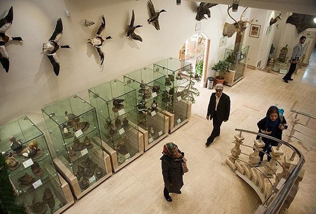 کجا برویم؟ موزه طبیعت و حیات وحش دارآباد