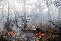 آتش در دل جنگل های ارسباران