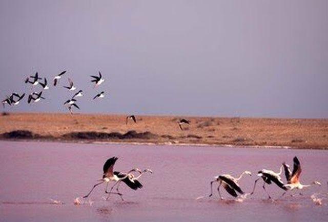 ثبت دریاچه لیپار در فهرست آثار طبیعی ملی