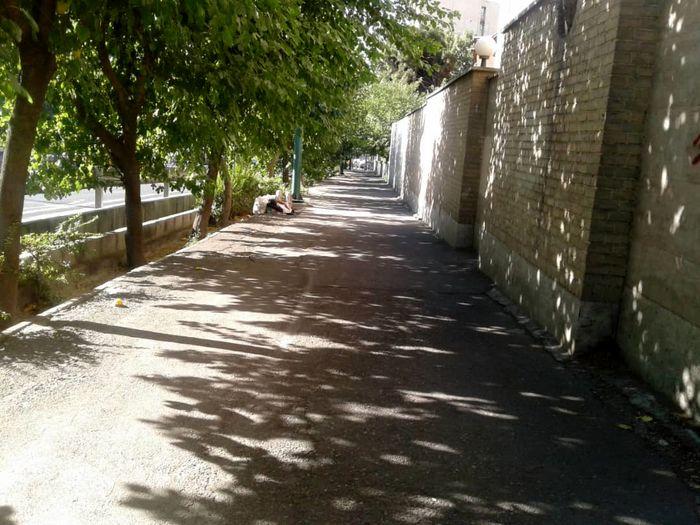 اتوبان خوابی در قلب تهران + عکس