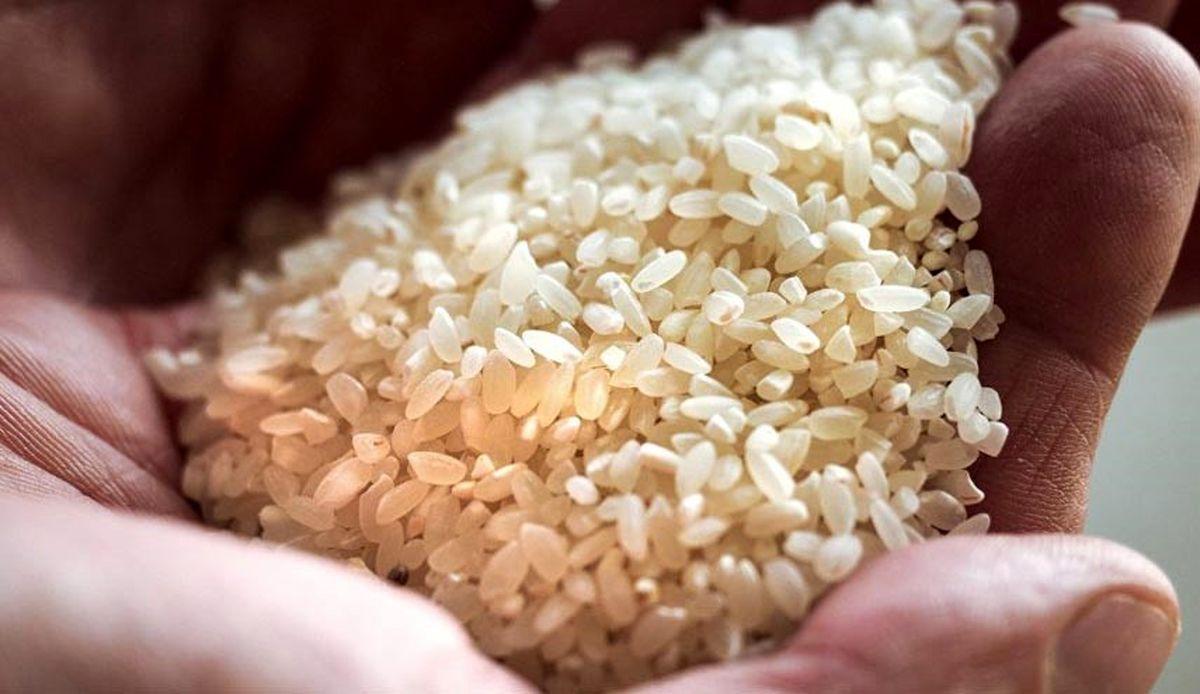 چگونه برنج پلاستیکی را تشخیص دهیم؟