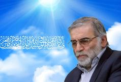 سروده مدیر کل فرهنگ و ارشاد اسلامی در توصیف شهید فخری زاده