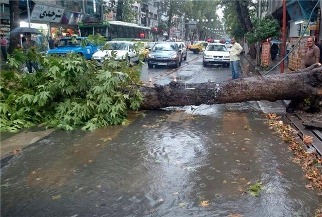 بیش از ۳۰ حادثه ناشی از خسارات طوفان در کرج