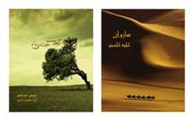 دو آلبوم «کجاست خانه باد» و «ساروان» منتشر شد