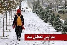 تعطیلی مدارس ابتدایی شرق استان تهران