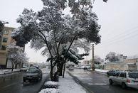 بارش برف و باران در محورهای استان زنجان از ساعاتی پیش آغاز شده و همچنان ادامه دارد
