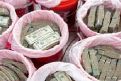 جریمه ۲۲ میلیارد ریالی برای قاچاقچیان ارز در ایلام