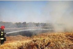 آتش سوزی در بستر رودخانه زاینده رود
