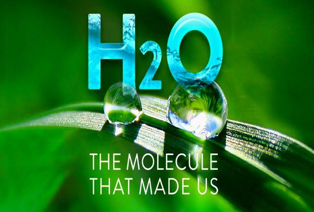 «(H20)،مولکول سازنده ما» به شبکه چهار آمد