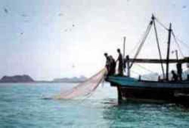 صید 20 هزار تن انواع ماهی های تجاری و صنعتی در جاسک