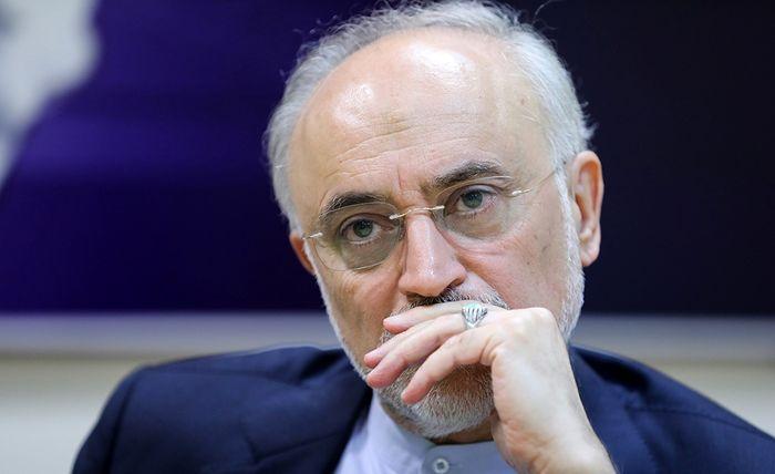 رئیس سازمان انرژی اتمی به سیدحسن نصرالله تسلیت گفت