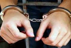 ۲۰ متخلف حوزه قاچاق چوب و زغال در شهرستان شاهرود دستگیر شدند