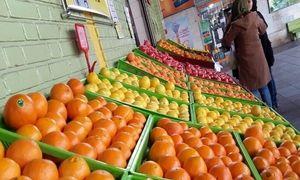 همه اقلام در ساعت ابتدایی در بازار میوه و ترهبار  وجود دارد/ مردم بیش از نیاز خریداری میکنند/ لیموترش و سیر تازه با قیمت مصوب به فروش میرسد