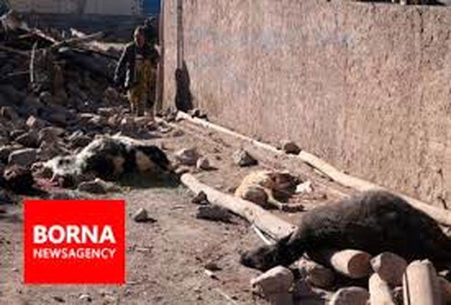 آیا واقعا انرژی زمین در مناطق زلزلهزده آذربایجان تخلیه شده است؟