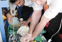 احیای مصدوم ۴۶ ساله با تلاش و اقدام به موقع کارشناسان اورژانس ۱۱۵