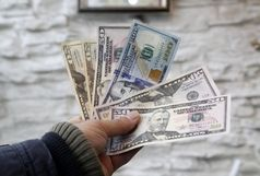 نرخ رسمی ۲۱ ارز افزایش یافت/ دلار آمریکا بدون تغییر ماند