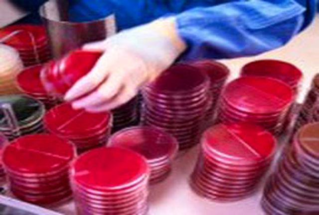 شش استان اول در زمینه ذخیره سلولهای بنیادی خون بند ناف