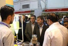 استفاده از ظرفیت های روستایی در جهت رونق اقتصاد و اشتغال آذربایجان غربی ضروری است