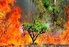 امسال خطر آتشسوزیها جدی است