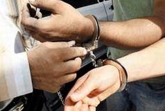 دستگیری 22 سارق سابقهدار و 30 خرده فروش مواد مخدر در زابل