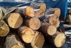کشف 5 تن چوب جنگلی قاچاق در لنگرود