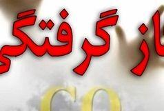 مرگ خاموش 2 شهروند ایرانشهری