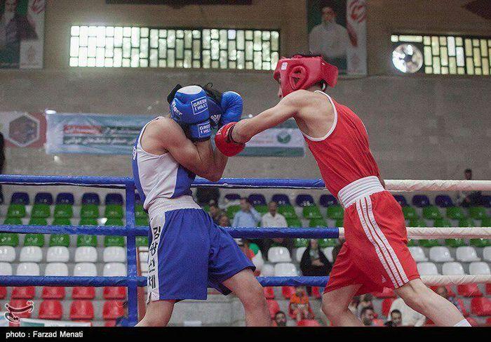 پایان مسابقات بوکس در تربت حیدریه