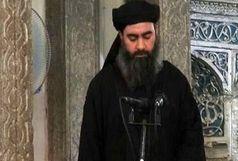 روایت یک داعشی از دیدار محرمانهاش با ابوبکر بغدادی