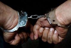 اعتراف به 24 فقره سرقت احشام