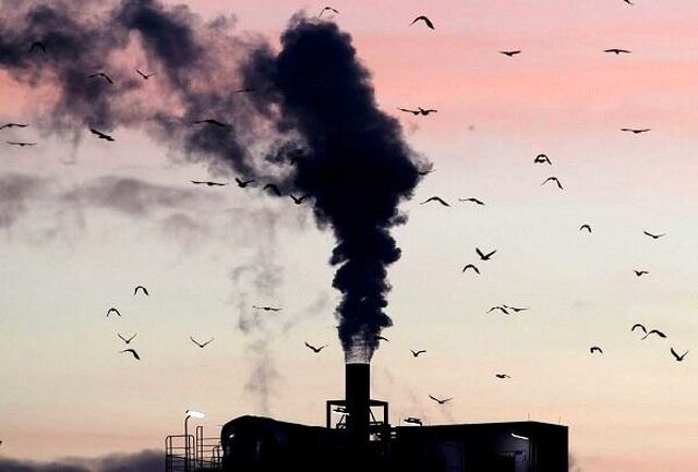 جهان یکونیم درجه گرمتر میشود/ عاقبت تخریب زیستگاهها بر زندگی بشر چه خواهد بود؟