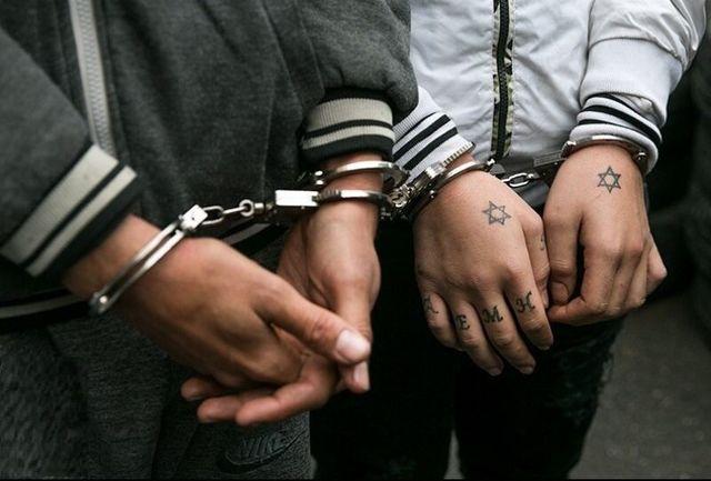 دستگیری 280 نفر از مخلان نظم و امنیت در فارس