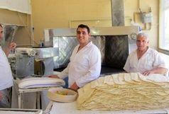بازدید از بیش از 100 واحد نانوایی استان
