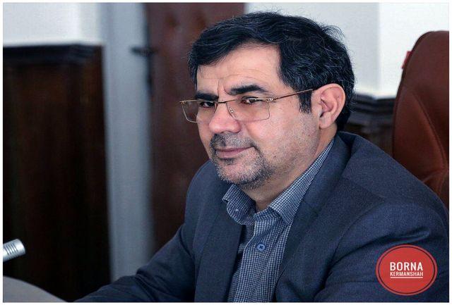 حضور باشکوه و مشارکت گسترده مردم در انتخابات تضمین کننده اهداف انقلاب است