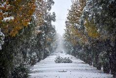 آخرین وضعیت جادههای کشور/ بارش برف در شمال غرب کشور