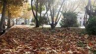 بوستانهای شهری قدس، ویترین زیبایی خزان با طرح سیمای پاییزی