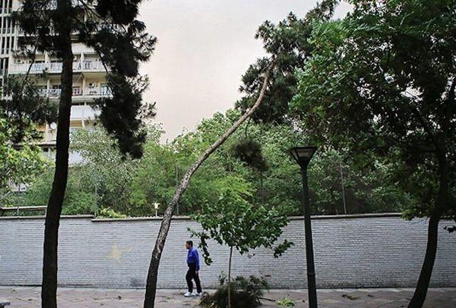 وزش باد نسبتا شدید در تهران طی فردا