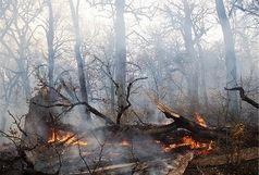 اطفای آتش جنگل های اندیکا ادامه دارد/آمادگی لازم برای اعزام بالگرد آب پاش