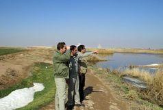 پایش زیستگاههای شهرستان البرز توسط کارشناسان