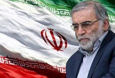 ترور شخصیتهای علمی، نشانه ناتوانی دشمنان در برابر عزم ملت ایران است