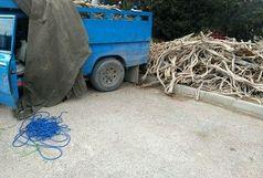کشف بیش از یک تن و ۵۰۰ کیلوگرم چوب قاچاق در دامغان