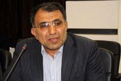 مسعودی: به دنبال حضور کشتیگیران استان در تیمهای ملی هستیم