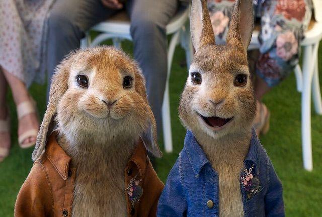 «پیتر خرگوشه ۲» پر فروش ترین انیمیشن گیشه انگلیس
