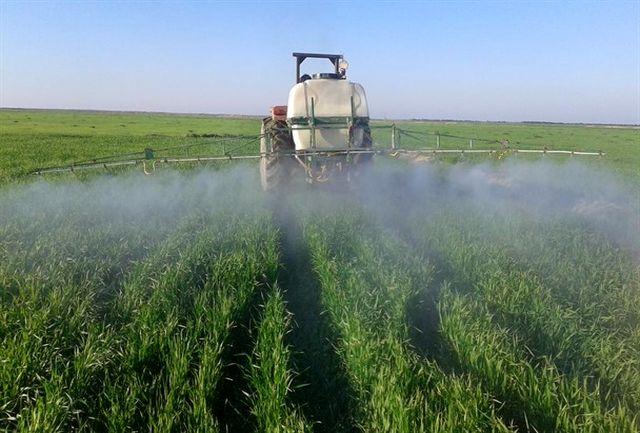 کارگاه آموزشی «شناسایی، کنترل و مدیریت عوامل خسارتزای زنده مزارع گندم» در زنجان برگزار شد