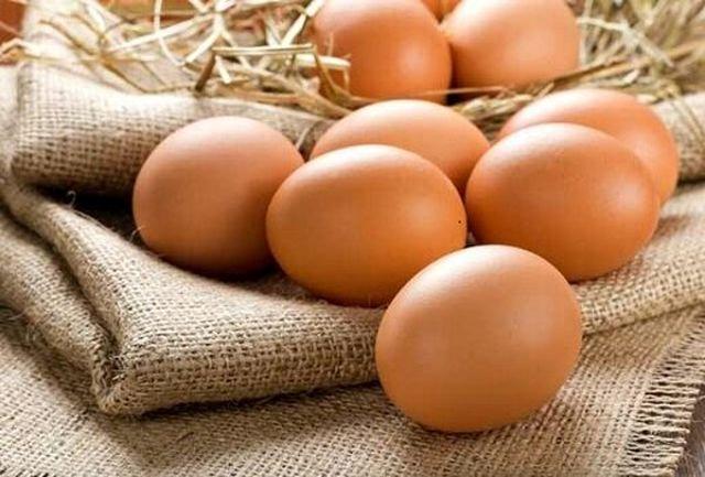 توزیع گسترده تخم مرغ با قیمت مصوب