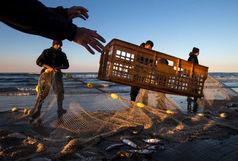 صیادان متخلف ماهی در کرخه دستگیر شدند