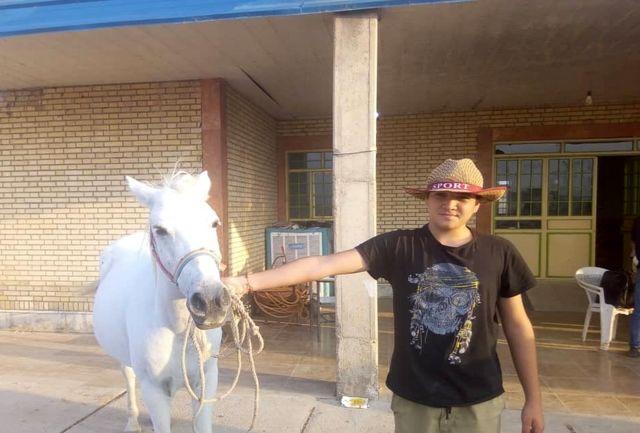 هویت گذاری اسب های کهگیلویه و بویراحمد